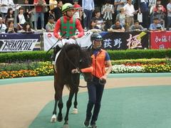 20190601 東京7R 3歳牝馬1勝 ラプターゲイル 11