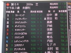 20140118 中山競馬場 ポッドコンジュ 01