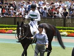 20160514 東京5R 3歳牝馬未勝利 ツボミ 15
