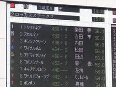 20170128 東京10R クロッカスS 3歳OP アドマイヤシナイ 01