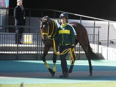 20141115 東京4R ノーブルクリスタル 02
