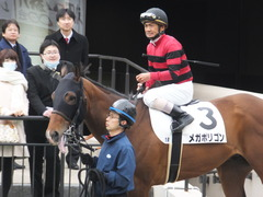 20170205 東京1R 3歳未勝利 メガポリゴン 15