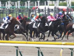 20150614 東京3R 3歳未勝利 コスモポッポ 12