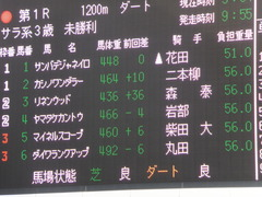 20140118中山競馬場 リネンウッド 01