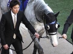 20131222 有馬記念 ゴールドシップ 04