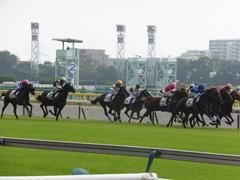 20141026 東京4R サウンドアラムシャ 13