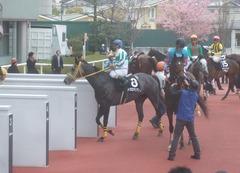 20110402(阪神競馬場)メジロマリアン