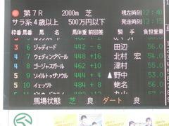 20190106 中山7R 4歳上(500) ウェディングベール 01