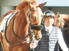 20181228 中山2R 2歳牝馬未勝利 パーフェクトワン 12