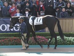 20151129 東京2R 2歳未勝利 ラルゴランド 04