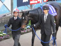 20131222 有馬記念 ラブイズブーシェ 02