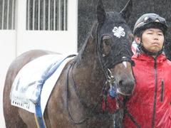 20170917 中山5R 2歳牝馬メイクデビュー ショウナンアーデン 02