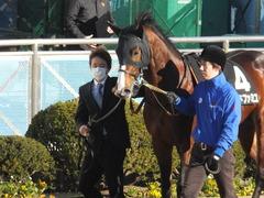 20141227 中山10R リヤンドファミユ 04