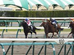 20150321 中山10R 韓国馬事会杯 ランドマーキュリー 08