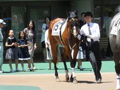 20140517 東京4R レッドリベリオン 03