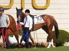 20151024 京都1R 2歳未勝利 サクレメジャー 02