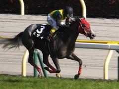 20170430 東京11R スイートピーS 3歳牝馬OP ミザイ 18