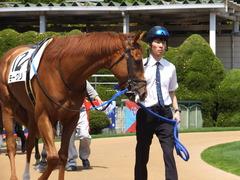 20150425 京都3R 3歳未勝利 モーグリ 04