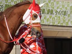 20170114 京都10R 北大路特別 4歳上牝馬1000万下 レーヌドブリエ 05