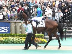 20141130 東京3R 2歳未勝利 トーセンカナロア 10