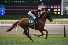 20200215 東京11R クイーンC(G3) 3歳牝馬OP ホウオウピースフル 19
