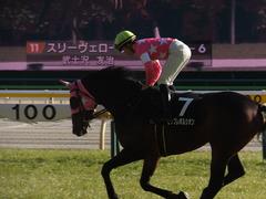 20170204 東京10R 箱根特別(1000) ビップレボルシオン 22