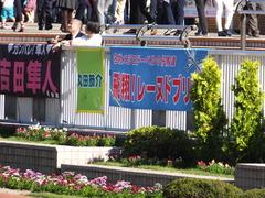 20161016 新潟10R 粟島特別(牝500) レーヌドブリエ 01
