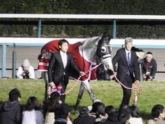 20151227 ゴールドシップ 引退式 08