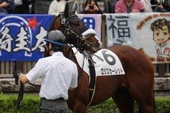 20191103 東京9R 3歳上2勝クラス ロジスカーレット 14