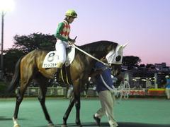 20160518 大井9R アイラブ大井賞 3歳 サンドプラチナ 08