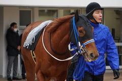 20200118 中山9R 菜の花賞 3歳牝馬1勝クラス シホノレジーナ 07