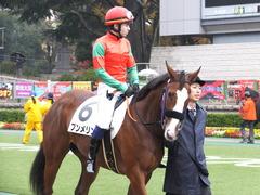 20161119 東京2R 2歳未勝利 プンメリン 11