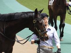 20160514 東京5R 3歳牝馬未勝利 ツボミ 13