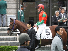 20161030 東京1R 2歳未勝利 プンメリン 16