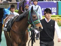 20161127 東京8R シャングリラ賞 ツクバアスナロ 08