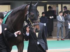 20151123 東京11R 東スポ杯2歳S(G2) プロディガルサン 03