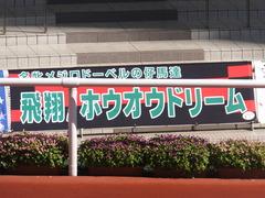 20170924 阪神11R 神戸新聞杯(G2) 3歳OP ホウオウドリーム 01
