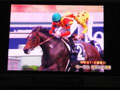 20151213 香港マイル(G1)モーリス 優勝おめでとう!