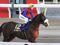 20151229 大井10R 東京大賞典 (G1) ユーロビート 21