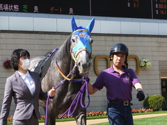 20150425 京都11R 錦S  アドマイヤビジン 05