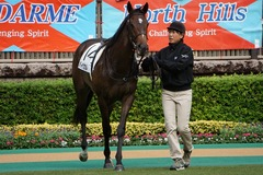 20191019 東京2R 2歳牝馬未勝利 バイカル 11