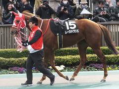 20170211 東京9R テレビ山梨杯(牝1000) レーヌドブリエ 09