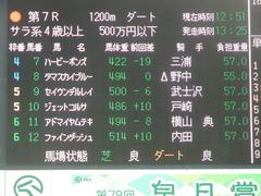 20190323 中山7R (500) アドマイヤムテキ 01