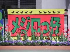 20181205 大井11R 勝島王冠(S2) ユーロビート 01