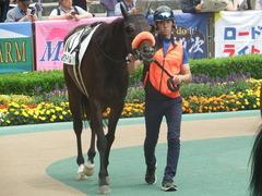 20190601 東京7R 3歳牝馬1勝 ラプターゲイル 05