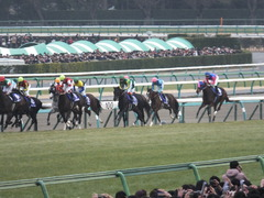 20141228 中山10R 有馬記念 ゴールドシップ 09