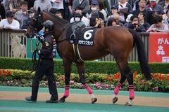 20191124 東京10R ウェルカムS (3勝) オウケンブラック 06