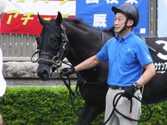 20170625 東京11R パラダイスS 3歳上(OP) ショウナンアチーヴ 12
