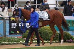 20200118 中山9R 菜の花賞 3歳牝馬1勝クラス シホノレジーナ 05