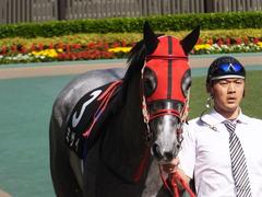 20170430 東京11R スイートピーS 3歳牝馬OP ミザイ 04